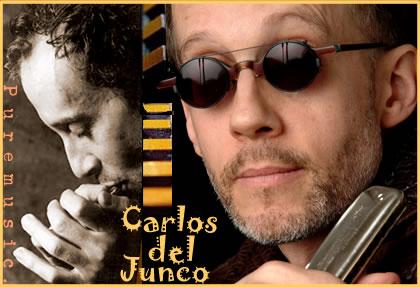 Carlos del junco скачать торрент