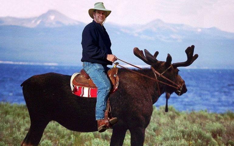 Canada Day mooseback riding