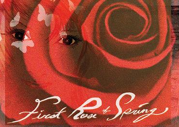 Willie Nelson album cover