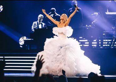 Celine on stage in Detroit Pic: Celine Dion Instagram