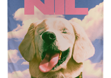 The Dirty Nil album graphic